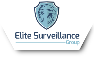 Elite Private Investigator